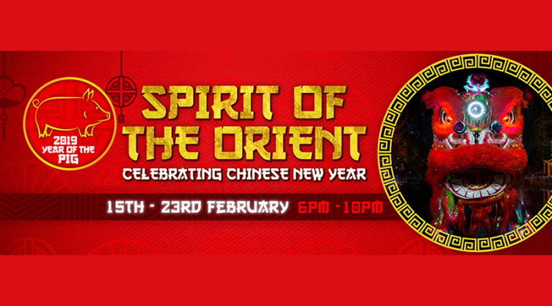 Spirit of the Orient 2019 : Electric Woods