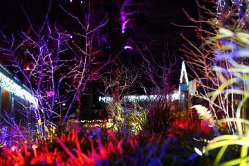 Festive breaks at Away Resorts